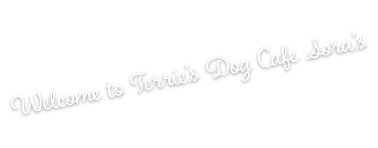 Welcome to Terrie's Dog Cafe Sora's